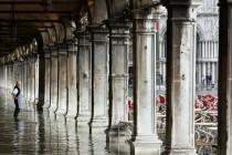 Venice 2008, Acqua Alta