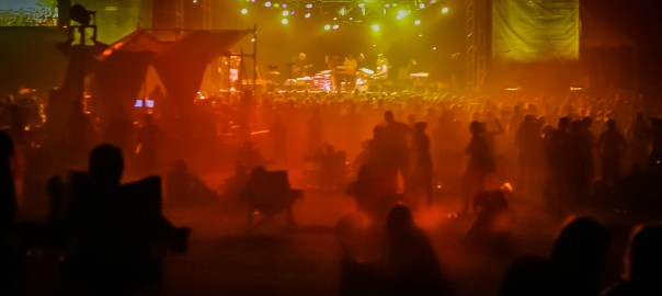 Tortoise in the Dust, ACL 2005